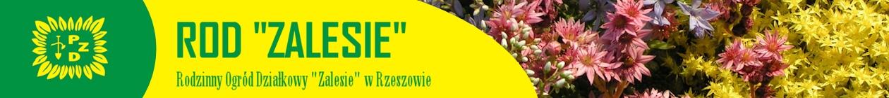 """Rodzinny Ogród Działkowy """"Zalesie"""" w Rzeszowie"""