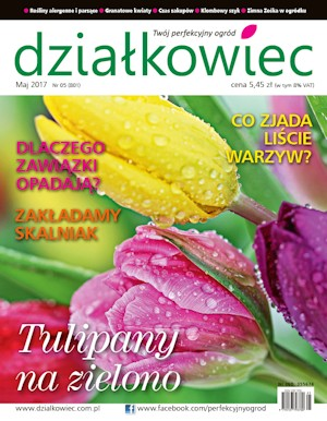 Działkowiec - maj 2017